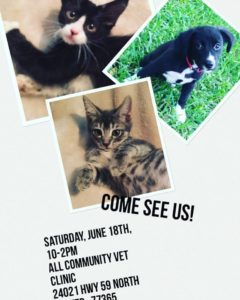 june-2016-adoption-event
